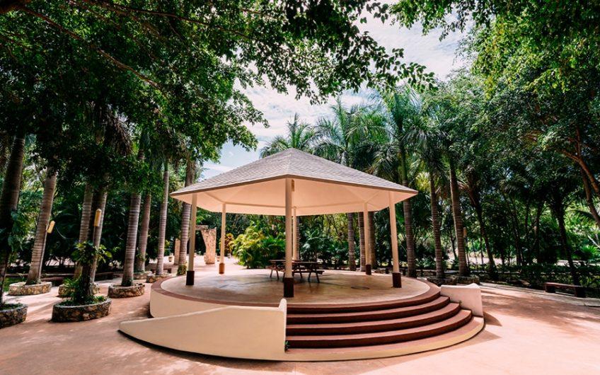 ARBOLADA  (Cancun)